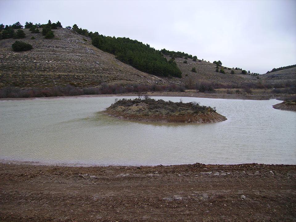 Humedal-Imagen-059